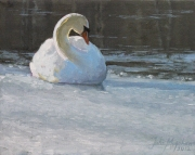 Huron River Swan, Oil on canvas