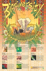 Poster for UM EEB biodiversity courses fall 2018. Illustrator