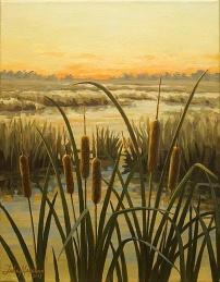 Cattail sunset