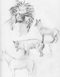 drawing7_fullsize