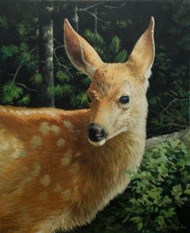 """Hurricane Ridge Fawn"" Oil on canvas."