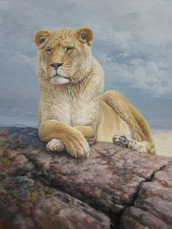lion_fullsize
