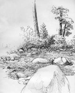 Idaho stream