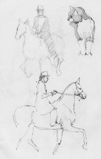 sketch17