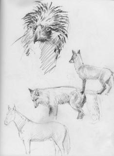 sketch18