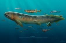 Early fish fauna at Glencartholm, Scotland