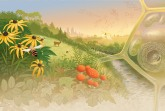 """Graphic for """"Green Life Science Conference"""""""